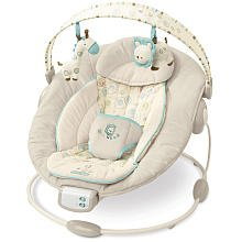 Bright Starts Comfort And Harmony Cradling Bouncer Review