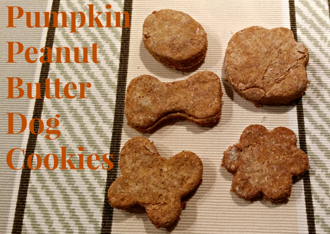Pumpkin Peanut Butter Dog Cookies