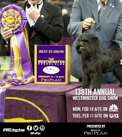 Winners Of Westminster Dog Show