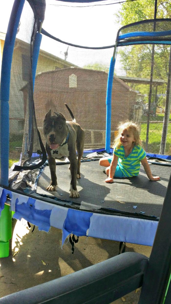 Rocky trampoline