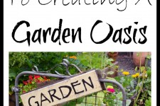 7 Tips To Creating A Garden Oasis