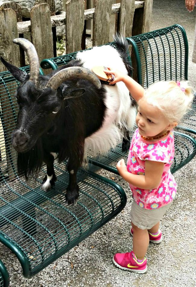 jemma with goat