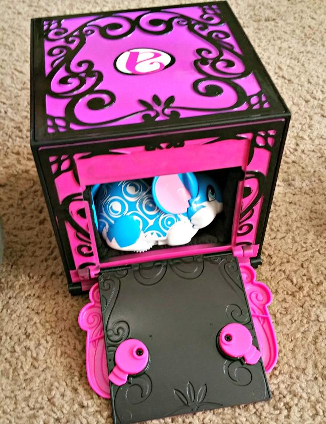 amazing zhu box