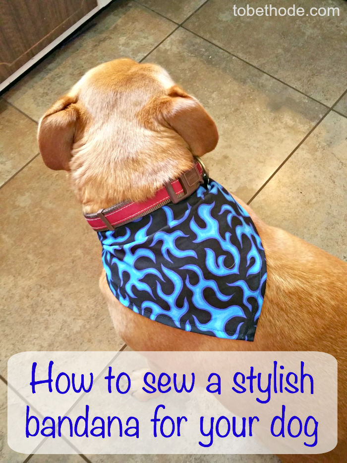 This easy sewing project makes an adorable bandana for your pup!