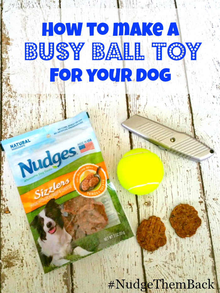 How to make a Busy Ball Toy for your dog