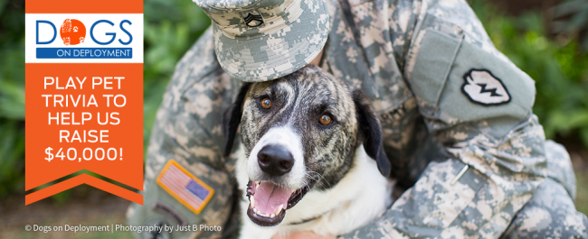Help the military and their pets through Dogs on Deployment with Pure Love for Pets Trivia