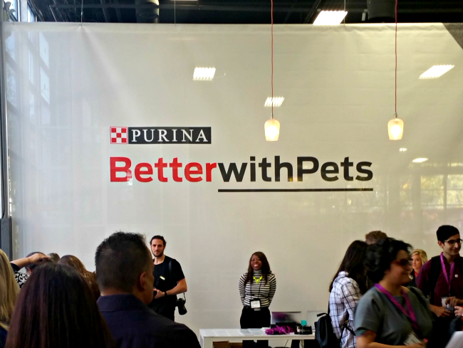 Recap of Better With Pets Summit