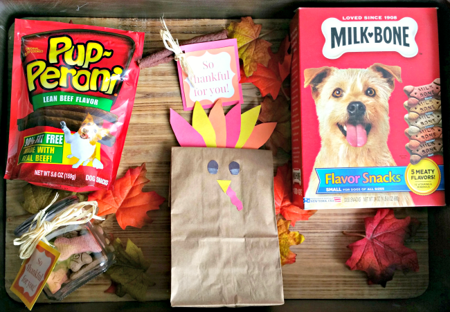 treat gifts for dogs